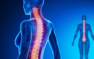La santé neuro-vertébrale –  Son importance !